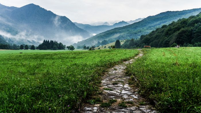 A rough pathway through a field in a misty mountain valley.